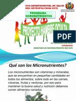 Taller Suplementacion Micronutrientes. Presentación Pptx