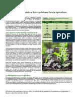 Hormonas Vegetales y Reguladores de Crecimiento
