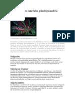 Cuáles Son Los Beneficios Psicológicos de La Marihuana