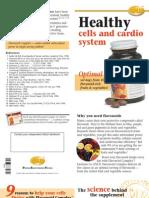 GNLD Flavonoid Complex Brochure