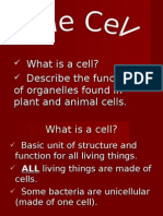 What is a Cell?  Describe the Functions of Organelles