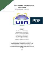 Laporan Praktikum Biologi Sel Dan Molekuler Kelompok Auli