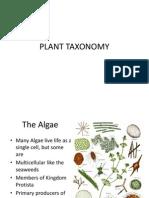PLANT TAXONOMY.ppt