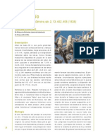 Abies pinsapo_Atropa baetica.pdf