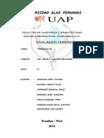 MEMORIA DESCRIPTIVA DE NIVELACION CERRADA.docx