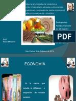 ECONOMIA Y COMERCIALIZACION (2).ppt