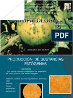 diapositivas de fitopatologia.pptx