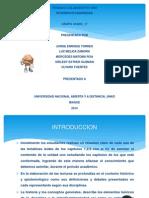 Diapositivas Trabajo Colaborativo Uno Interdisciplinariedad 1