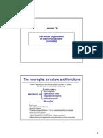 Neuroglia.pdf (Ingles)