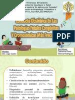 Conducta Obstétrica en Las Patologías Fetales Congénitas y Cromosómicas Más Frecuentes