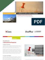 PDF_Dirección_de_Proyecto s