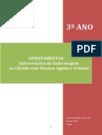 APONTAMENTOS OFICIAIS IECDAC.pdf