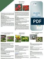 Plants of Bulgaria