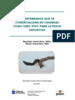 Invertebrados Que Se Comercializan en Canarias Como Cebo Vivo Para La Pesca Deportiva