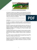 CONSERVACION FORRAJES ENSILAJE.HENOLAJE.HENIFICACION.pdf