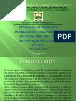 Sustentacion - Practica Pre-profecional - Ramirez Tolentino, Luisbrando