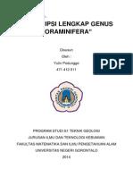 Yulin Podungge - Mikropaleontologi