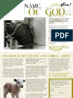 Cruelty of Religious Animal Slaughter