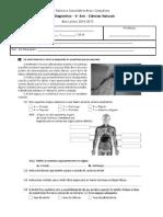 Ficha Diagnóstica CN6- 2014