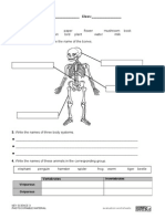Evaluations (SCIENCE SM3º)