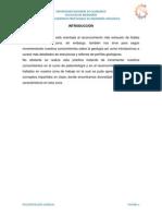 Investigacion Paleontologia - Pampa La Culebra