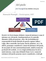 Sistema_core_del_piede.pdf