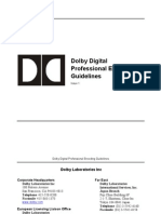 Dolby Digital Professional Encoding Guidelines