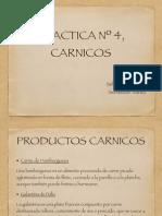 Practica Carnicos
