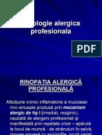 3.Patologie Alergica Profesionala Respiratorie