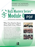 BaZi for Beginner Course Advantage