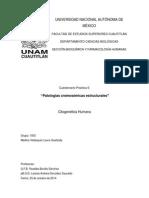 Cuestionario Práctica 5 Patologías Cromosómicas Estructurales
