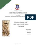 principios copp.docx