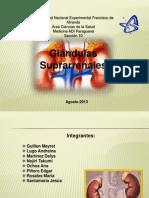 diapositivasglandulassuprarrenales-130802005949-phpapp01
