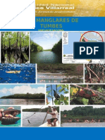 MANGLARES DE TUMBES.doc