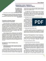 Fact Sheet Peningkatan Cukai Tembakau Dampak Perekonomian Tenaga Kerja