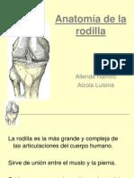Artroscopía