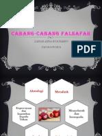 Cabang-Cabang Falsafah Pendidikan Kebangsaan 2012.pptx