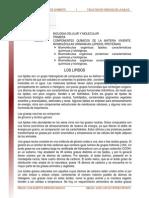 Biomoleculas Organicas Lipidos Proteinas Enzimas Lectura