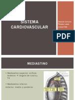 Exploracion del Sistema Cardiovascular