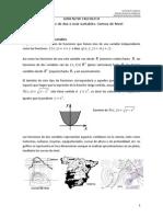 Guía 2_cálculo II