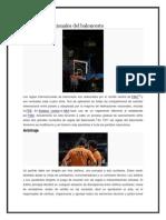 Reglas Internacionales Del Baloncesto