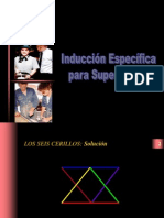 Induccion Especifica Para Supervisores