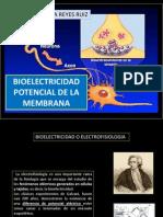2biofisica-bioelectricidad