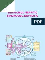 Nefritic_nefrotic.ppt