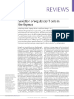 Selection of Regulatory T Cells in the Tymus