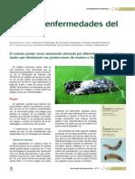 castaño.pdf