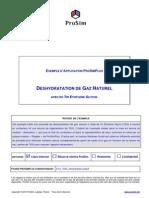 Deshydratation-de-Gaz.pdf