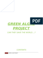 Green Algae Project