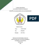 Sopan Hadi ( f05112017 ) Laporan Praktikum Anatomi Fisiologi Tumbuhan Tentang Penentuan Kadar Klorofil Secara Spektroskopi