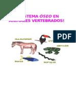 Sistema Oseo de Los Animales